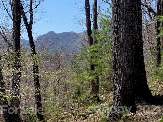 353 Buzzards Place, Lake Lure, NC 28746 (#3727745) :: Stephen Cooley Real Estate Group