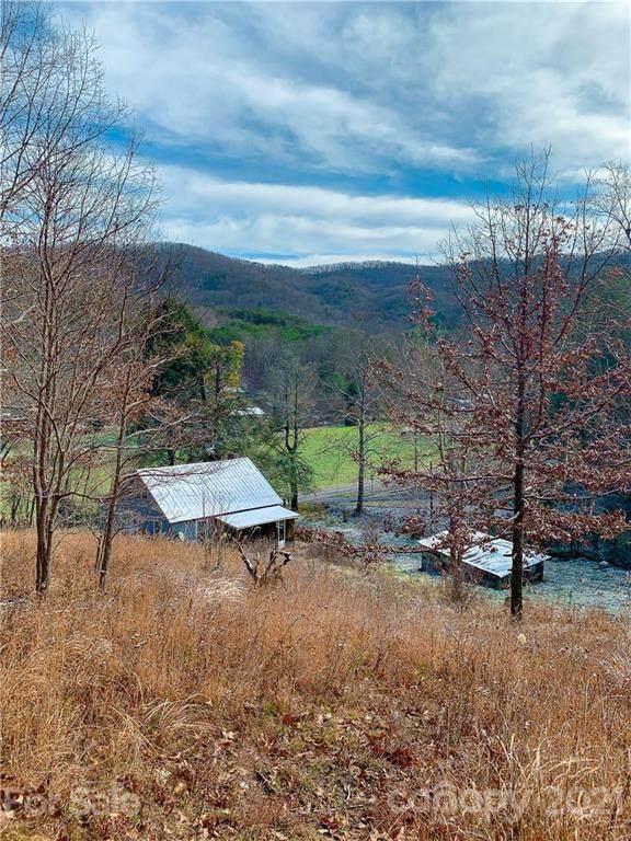117 Eller Cove Road, Weaverville, NC 28787 (#3728564) :: MOVE Asheville Realty
