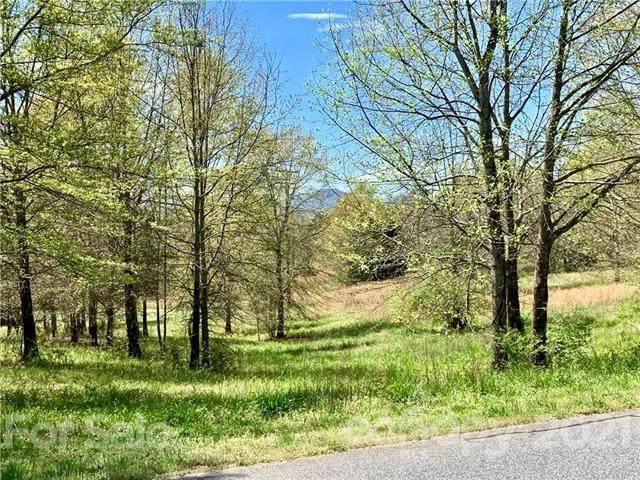 0 Ole Plantation Drive Lot 12, Rutherfordton, NC 28139 (#3733200) :: TeamHeidi®