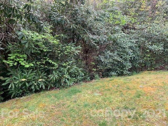 201 Settings Boulevard #244, Black Mountain, NC 28711 (#3733705) :: Cloninger Properties