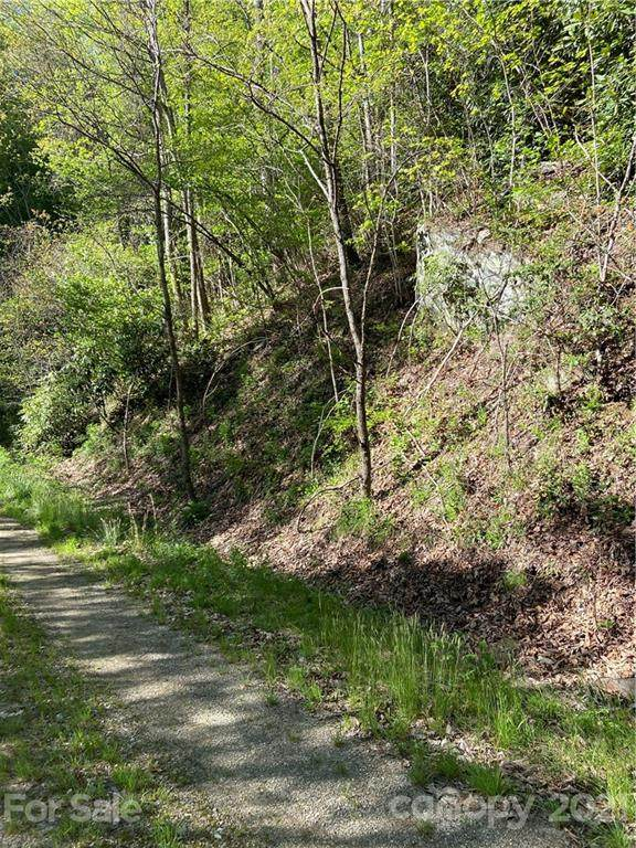 00 Amber Sky Drive #33, Waynesville, NC 28785 (#3735031) :: Willow Oak, REALTORS®