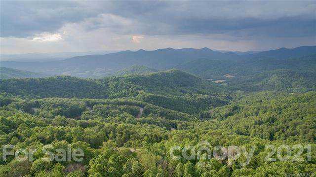 1300 Elk Mountain Scenic Highway, Asheville, NC 28804 (#3735729) :: Rowena Patton's All-Star Powerhouse