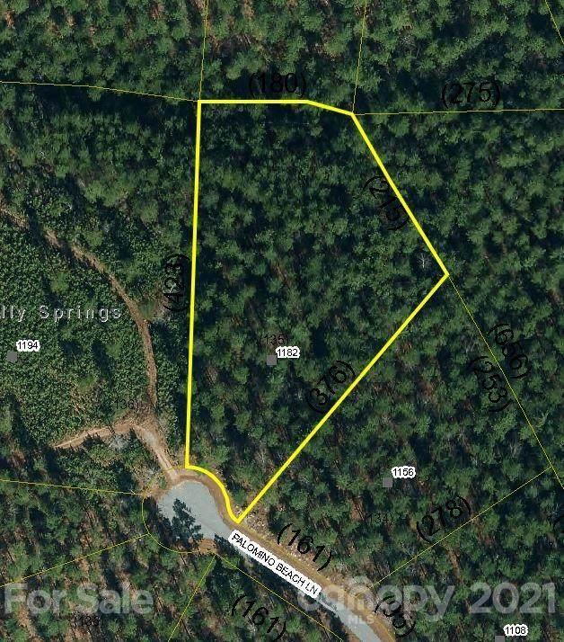 1182 Palomino Beach Lane, Connelly Springs, NC 28612 (#3736200) :: Rhonda Wood Realty Group
