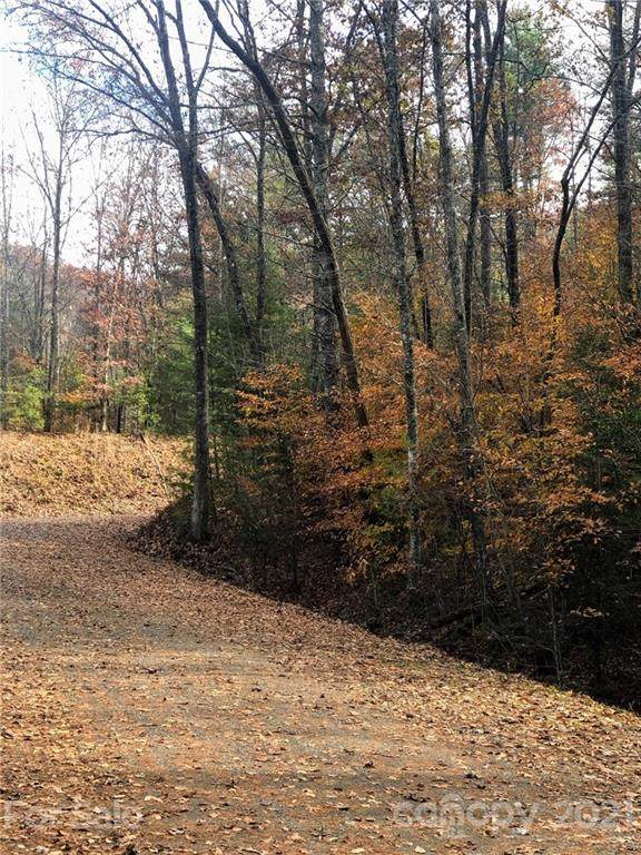 0 Rustling Woods Trail #49, Cullowhee, NC 28723 (#3736532) :: Carolina Real Estate Experts