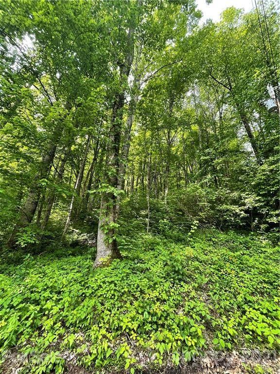 00 Calm Creek Road 322-323, Waynesville, NC 28785 (#3736997) :: Exit Realty Vistas