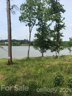 4017 Tuffy Lane, Charlotte, NC 28278 (#3737636) :: Willow Oak, REALTORS®
