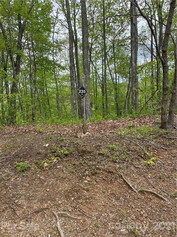235 Down The Hill Road #235, Sylva, NC 28779 (#3737966) :: Mossy Oak Properties Land and Luxury