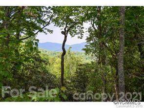 936 Mills River Way, Horse Shoe, NC 28742 (#3738736) :: Home and Key Realty