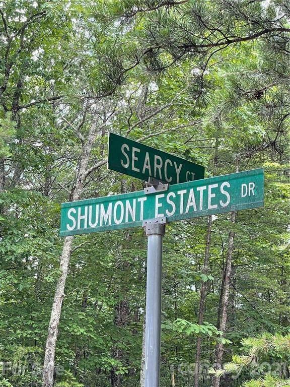 0 Searcy Court #87, Lake Lure, NC 28746 (#3738801) :: Puma & Associates Realty Inc.