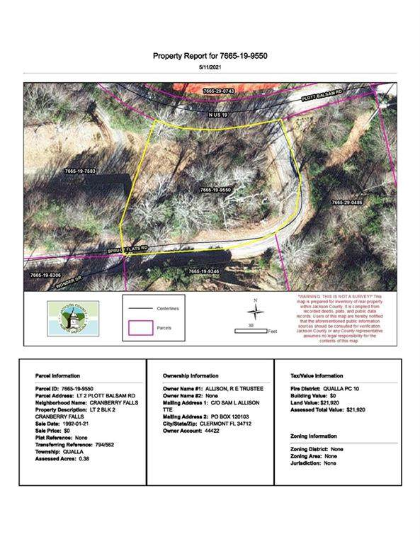 2 Plott Balsam Road #2, Maggie Valley, NC 28751 (#3738995) :: Mossy Oak Properties Land and Luxury