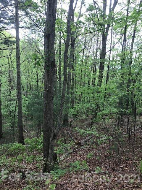 Lot 3 Roberts Mountain Road, Clyde, NC 28716 (#3739460) :: Mossy Oak Properties Land and Luxury