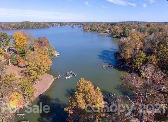 218 Waddell Road, Mooresville, NC 28117 (#3739747) :: Burton Real Estate Group