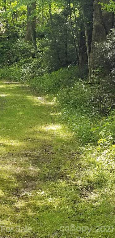 00 Rules Run Road, Clyde, NC 28721 (#3739777) :: Mossy Oak Properties Land and Luxury