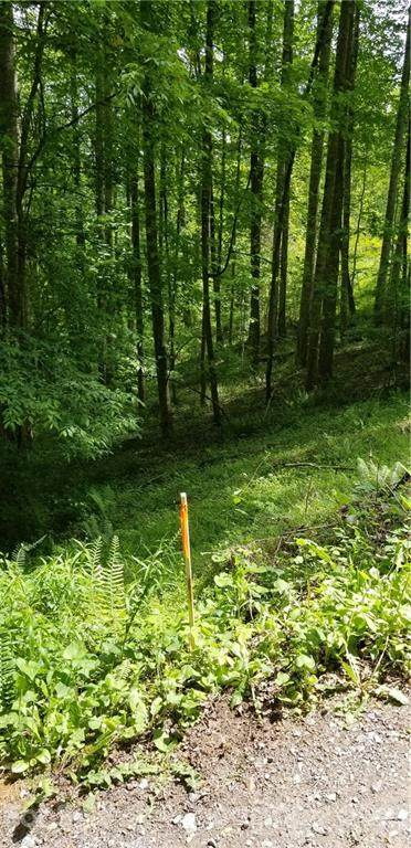 00 Dickinson Road, Clyde, NC 28721 (#3739809) :: Mossy Oak Properties Land and Luxury