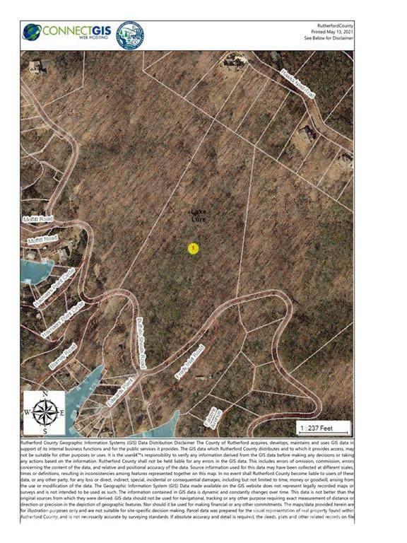 LOT 2 Buffalo Shoals Road, Lake Lure, NC 28746 (#3739816) :: DK Professionals
