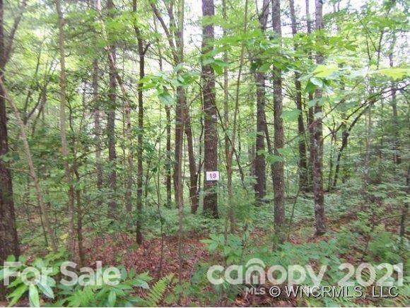 TBD Wellspring Way #19, Brevard, NC 28712 (#3740720) :: Mossy Oak Properties Land and Luxury
