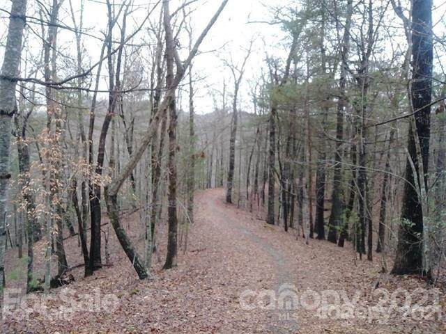 TBD Wellspring Way #23, Brevard, NC 28712 (#3740798) :: Mossy Oak Properties Land and Luxury