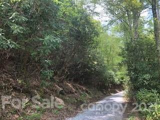 000 Lazy Bear Trail Lot #35, Fletcher, NC 28732 (#3740975) :: DK Professionals