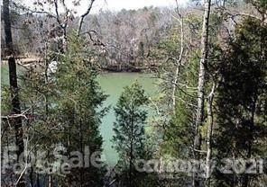 10405 Green Heron Court, Charlotte, NC 28278 (#3741670) :: Todd Lemoine Team