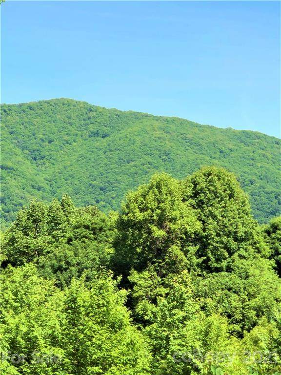 572 Slippery Rock Road, Waynesville, NC 28785 (#3742675) :: Odell Realty