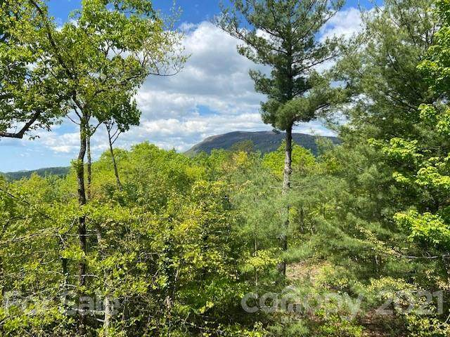 HM 48 Quartz Mine Road #48, Lake Toxaway, NC 28747 (#3743535) :: BluAxis Realty