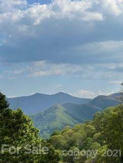 99 Bo Dale Drive, Maggie Valley, NC 28751 (#3743611) :: Carlyle Properties