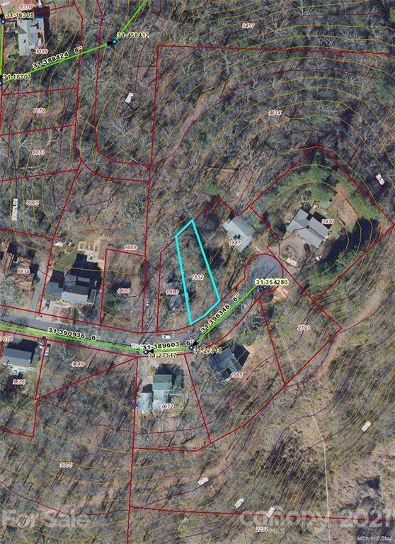 99999 Westchester Drive, Asheville, NC 28803 (#3744280) :: LePage Johnson Realty Group, LLC
