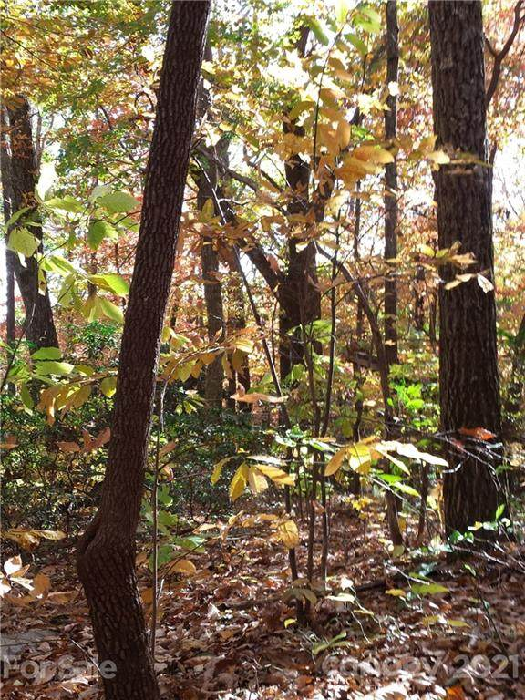 Lot 49 Hickory Acres Road #49, Edneyville, NC 28792 (#3745297) :: Carlyle Properties