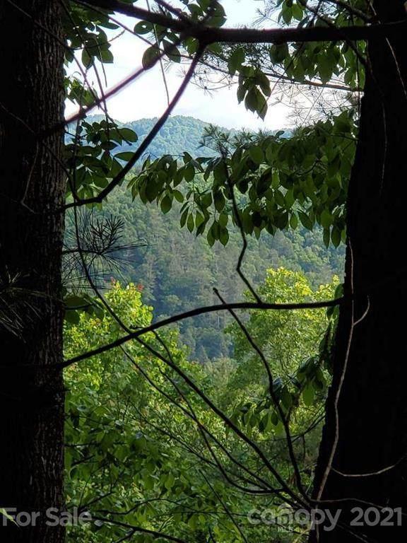 240 White Water Way #13, Marshall, NC 28753 (#3746011) :: Willow Oak, REALTORS®