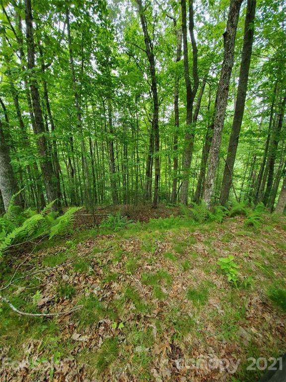 141 River Club Trail #8, Marshall, NC 28753 (#3746015) :: Willow Oak, REALTORS®
