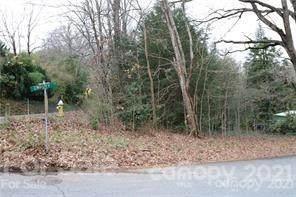0 Hogback Mountain Road, Tryon, NC 28782 (#3746614) :: Carver Pressley, REALTORS®