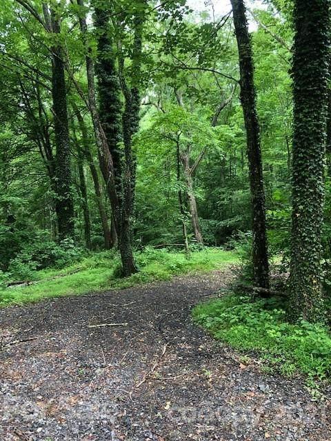 4 Gold Finch Lane, Swannanoa, NC 28778 (#3746823) :: Modern Mountain Real Estate