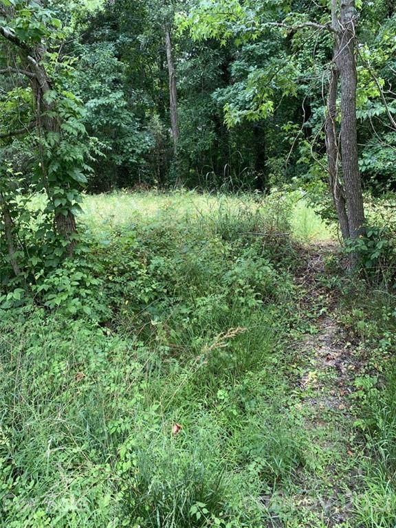 0 Deer Run Extension 47A, Rock Hill, SC 29732 (#3747857) :: Stephen Cooley Real Estate Group