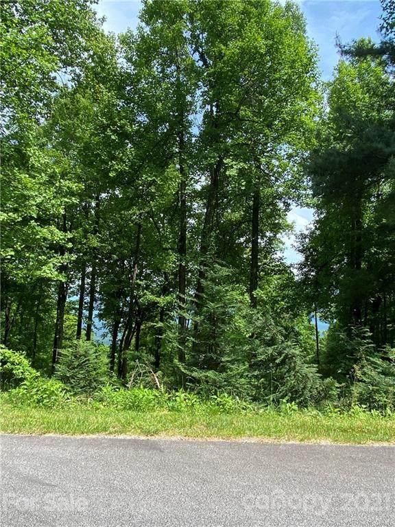 260 Haddington Drive, Mill Spring, NC 28756 (#3748499) :: Keller Williams Professionals