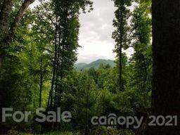 TBD Rex Bradford Road, Burnsville, NC 28714 (#3749239) :: Caulder Realty and Land Co.