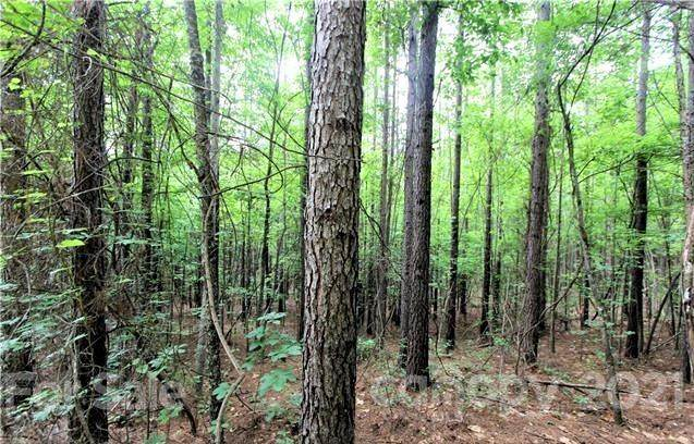 8 Chasewood Drive, Rutherfordton, NC 28139 (#3750806) :: Mossy Oak Properties Land and Luxury