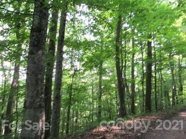TBD Sidewinder Drive #23, Green Mountain, NC 28740 (#3751341) :: Lake Wylie Realty