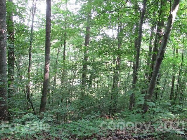 TBD Sidewinder Drive #23, Green Mountain, NC 28740 (#3751350) :: Lake Wylie Realty