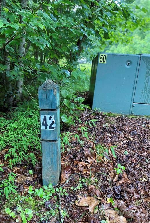 TBD New Castle Road, Brevard, NC 28712 (#3751362) :: The Snipes Team | Keller Williams Fort Mill