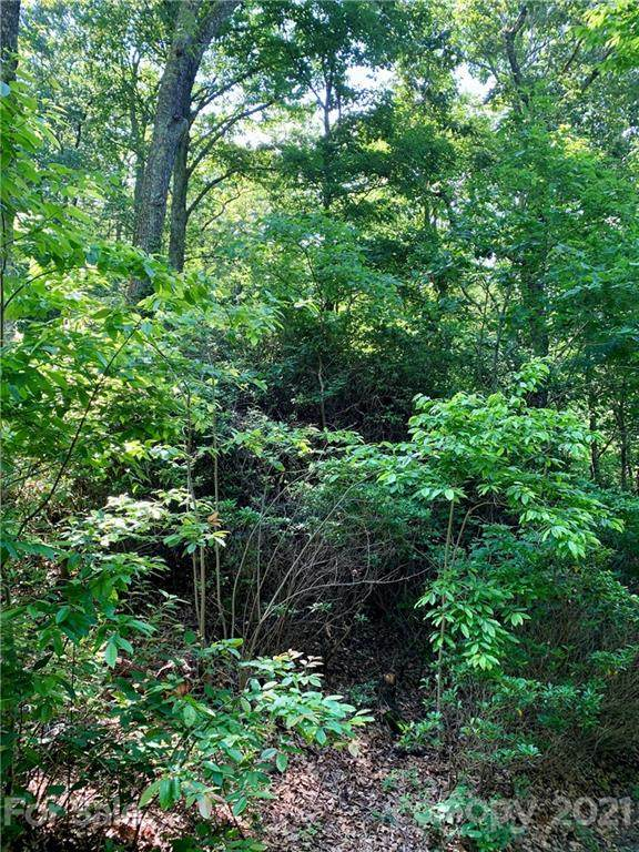 Lot 29 Hickory Acres Road #29, Edneyville, NC 28792 (#3751409) :: Carlyle Properties