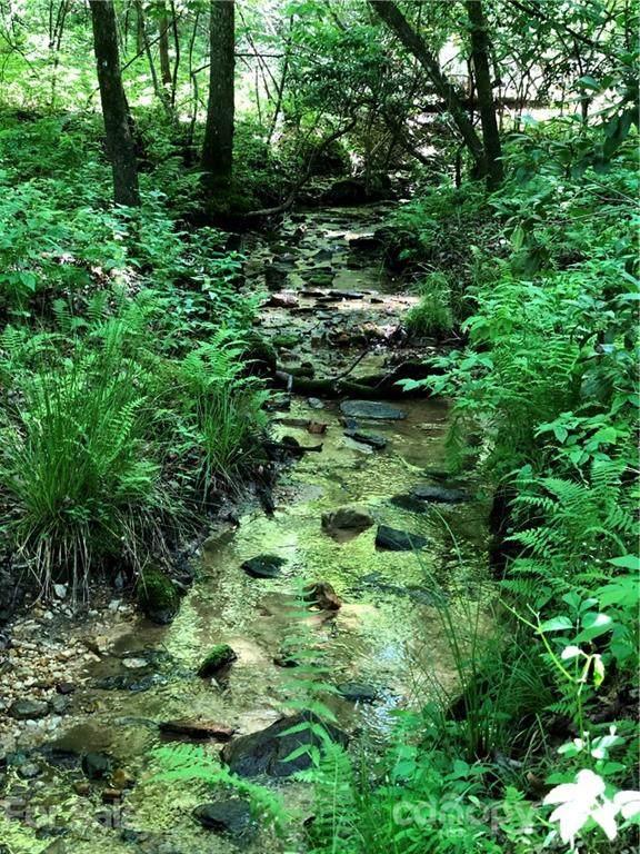 TBD Breckenridge Trail, Brevard, NC 28712 (#3751499) :: BluAxis Realty