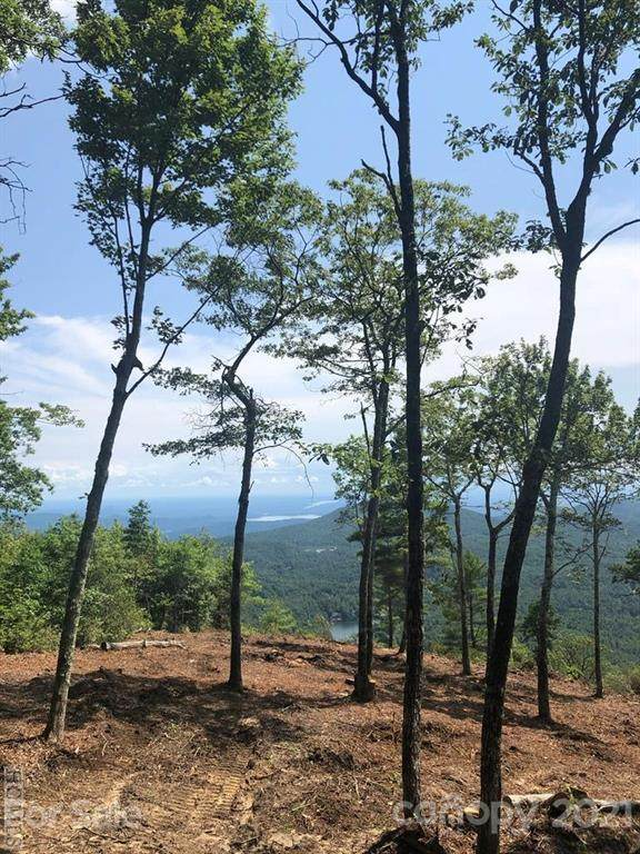 25 White Tail Drive Lot 25& 26, Sapphire, NC 28774 (#3752412) :: LePage Johnson Realty Group, LLC