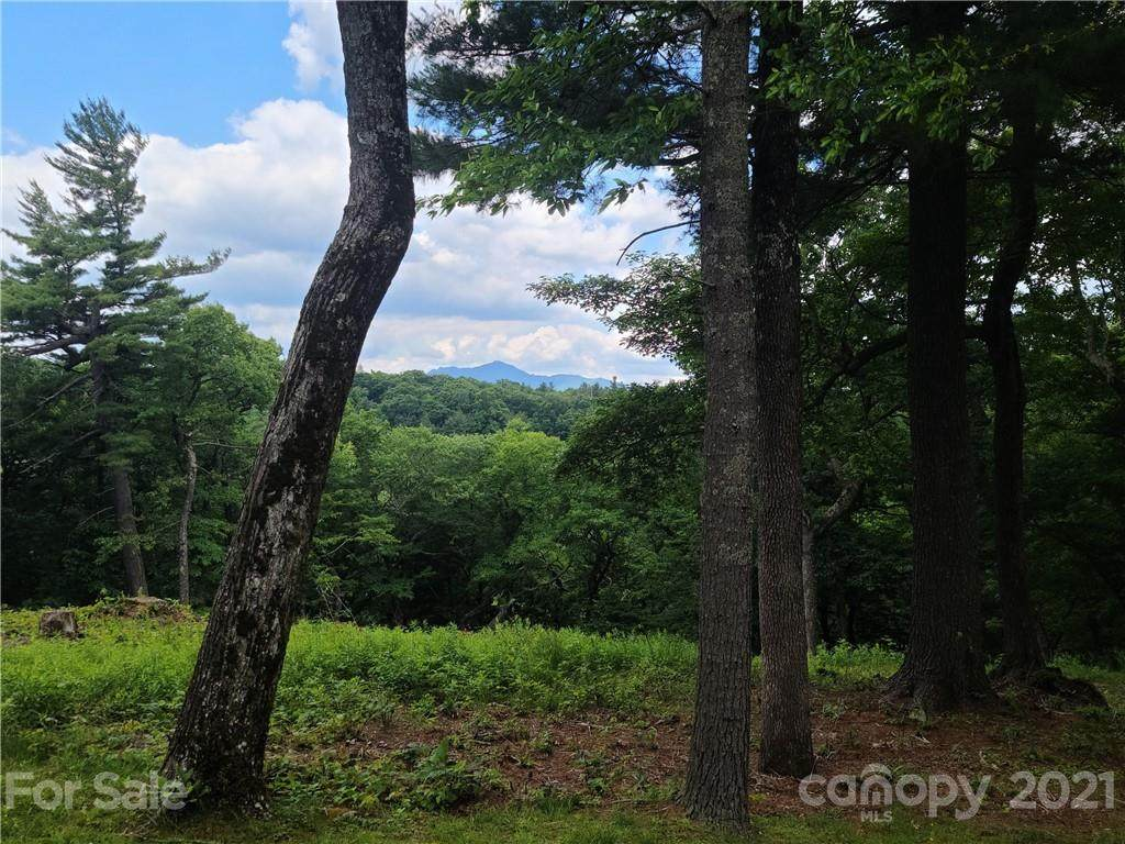 0 Firethorn Trail - Photo 1
