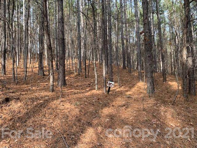 9 Chasewood Drive #9, Rutherfordton, NC 28139 (#3752649) :: Mossy Oak Properties Land and Luxury