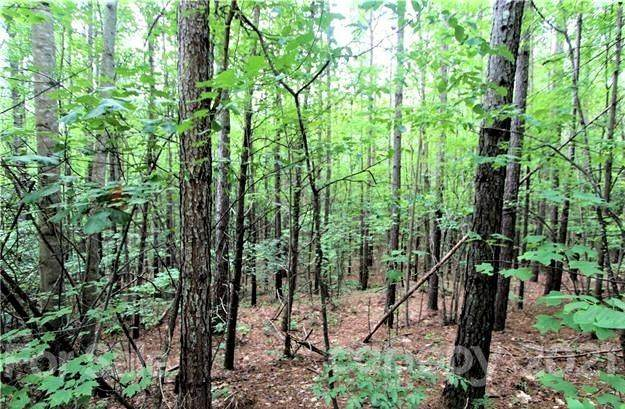 13 Chasewood Drive #13, Rutherfordton, NC 28139 (#3752714) :: Mossy Oak Properties Land and Luxury