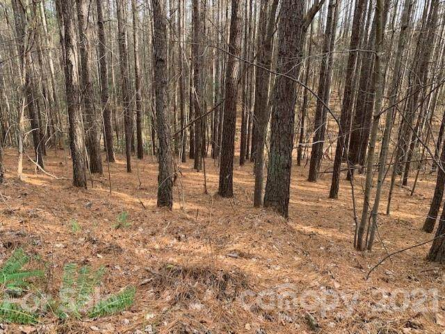 16 Chasewood Drive #16, Rutherfordton, NC 28139 (#3752728) :: Mossy Oak Properties Land and Luxury