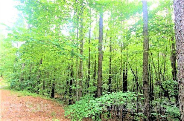 17 Chasewood Drive #17, Rutherfordton, NC 28139 (#3752823) :: Mossy Oak Properties Land and Luxury