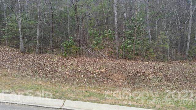 57 Old Lafayette Lane #31, Black Mountain, NC 28711 (#3755211) :: MartinGroup Properties