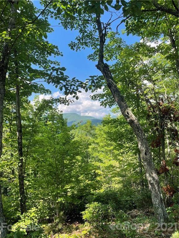 V/L Fox Ridge Trail #45, Marion, NC 28752 (#3755371) :: LePage Johnson Realty Group, LLC