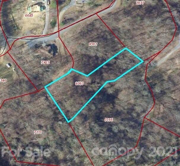 11 Chandra Lane, Clyde, NC 28721 (#3755655) :: Exit Realty Elite Properties